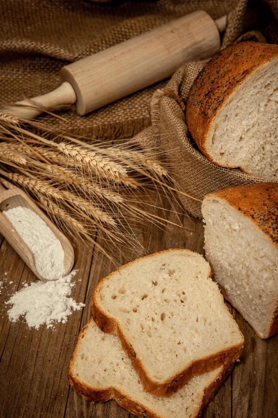 paine-alba-la-tava (1)